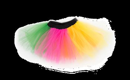 Picture of Rainbow Tu Tu